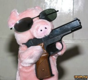 Pigs with Guns